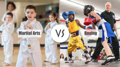Martial Arts VS Boxing